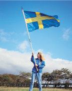 Svensk fane med tilbehør